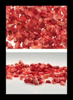 fresa liofilizzatas