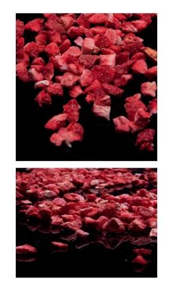 fresa liofilizzatasblack